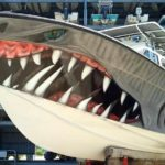 Pintura 3D no casco deixa lancha com a cara de tubarão faminto
