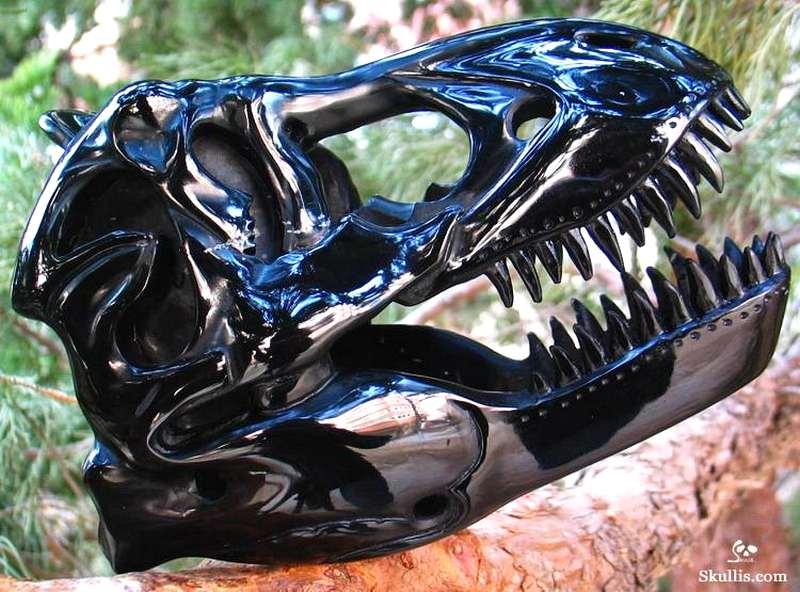 Cabeça de Tiranossauro rex