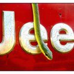Serpente desliza sobre a logo prateada em alto-relevo do Jeep
