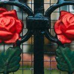Circunda-te de rosas, ama, bebe e cala porque o mais é nada