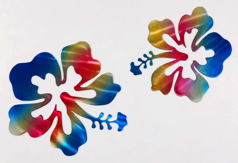 Flores coloridas em arco-íris