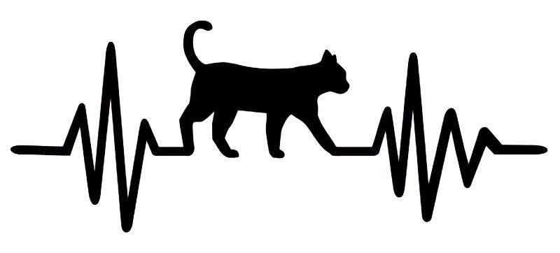 Desenho de gato com batimentos cardíacos