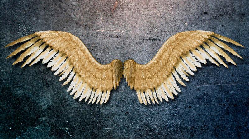 Decoração com asas metálicas