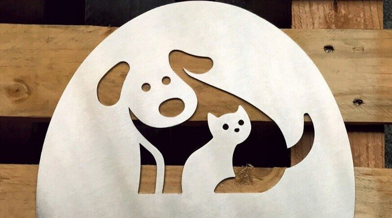 Painel de parede com cão e gato